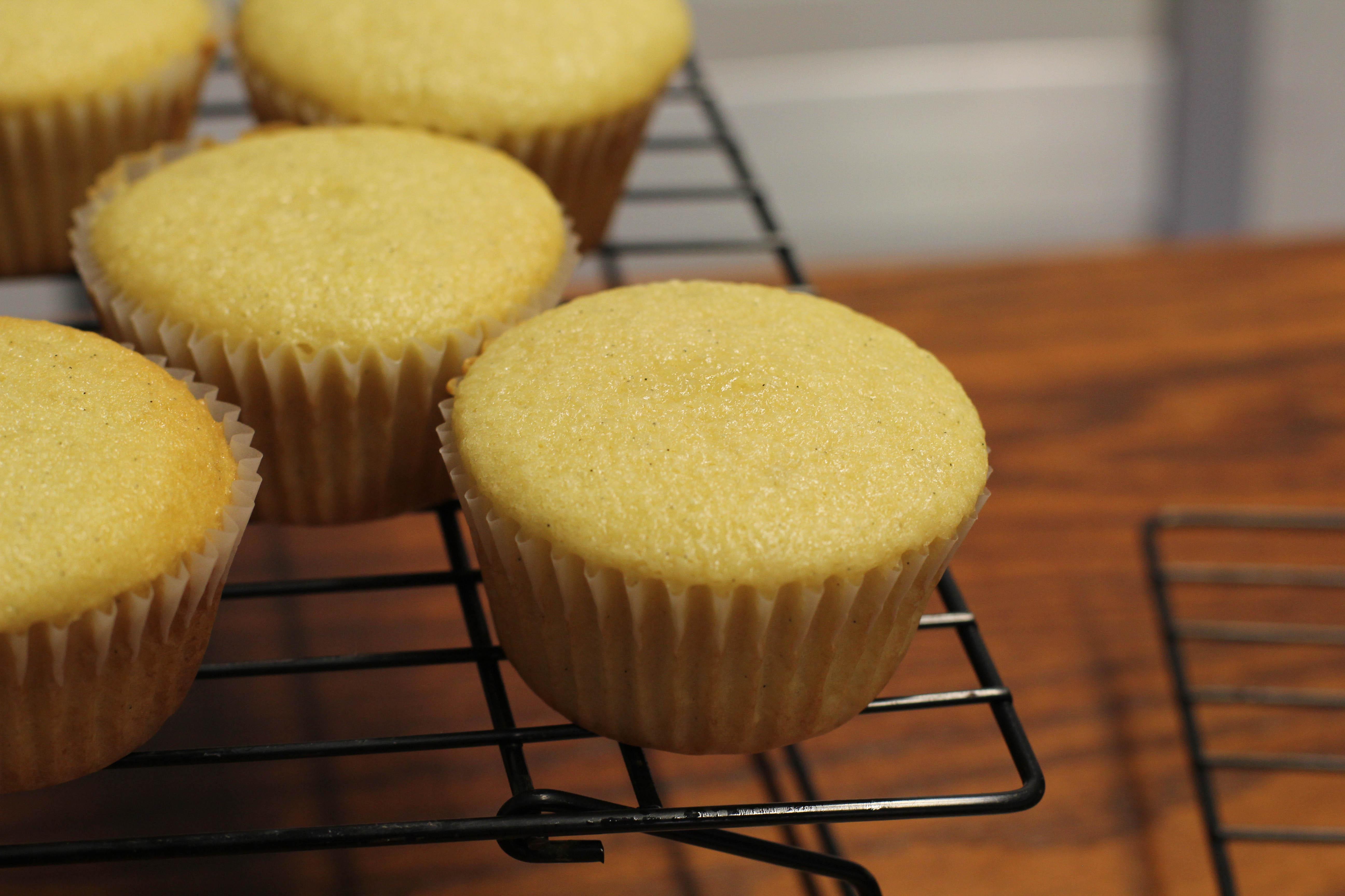 The Ultimate Vanilla Cupcake | boomie's kitchen
